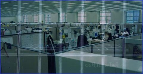 cubicle prison grid