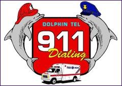 Doplhins 911