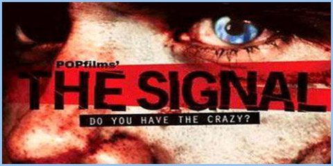 crazy signal