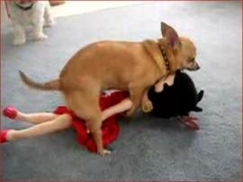 betty boop rape