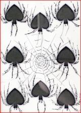 spider spades