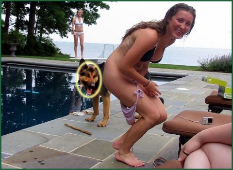 doggie wants