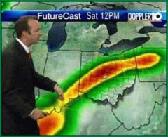 size forecast