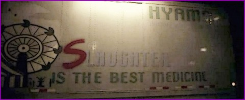 hyams slaughter