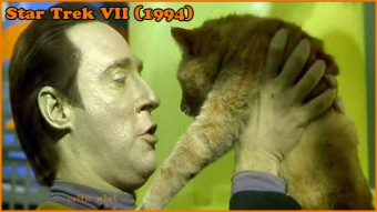 come kitty trek