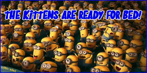 despicable me kittens