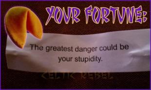 stupid fortune