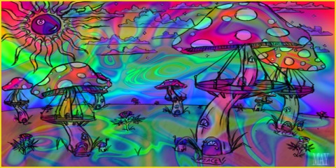 psychedelic rebel
