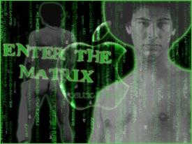 gay matrix