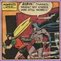 robin the cradle