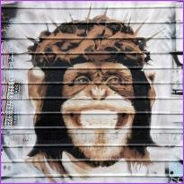 Monkey Jesus