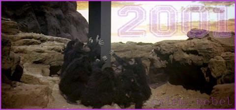 Monolith 2001 Apes