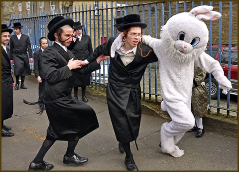 rabbit jews