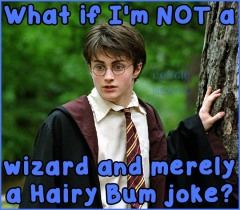 Harry Potter = Hairy Asshole