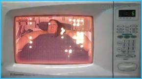 microwave obesity