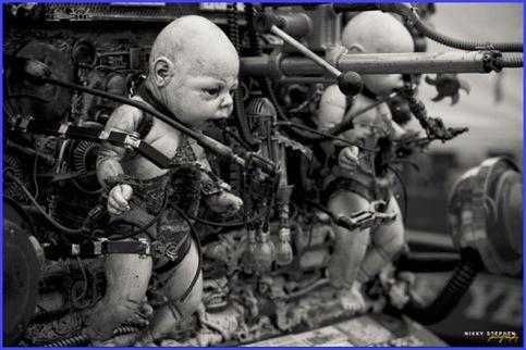 Freemont Babies